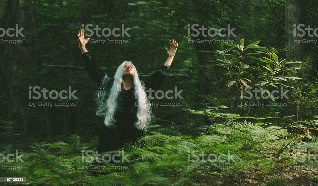 female sorcerer in the woods stock photo