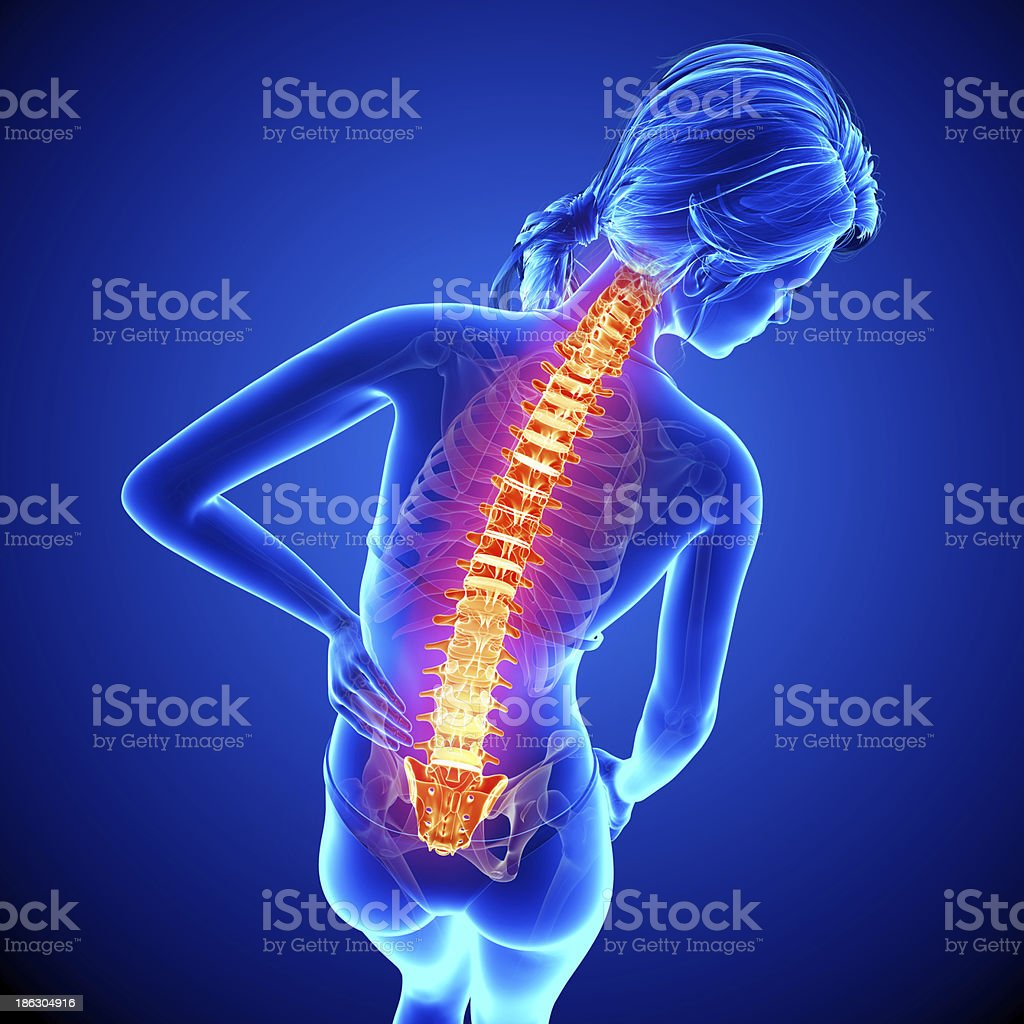 Female spine pain royalty-free stock photo