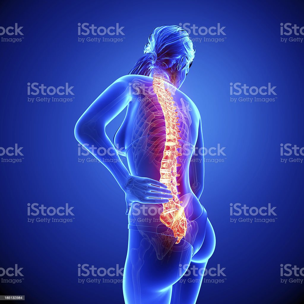 Female spine pain side view royalty-free stock photo
