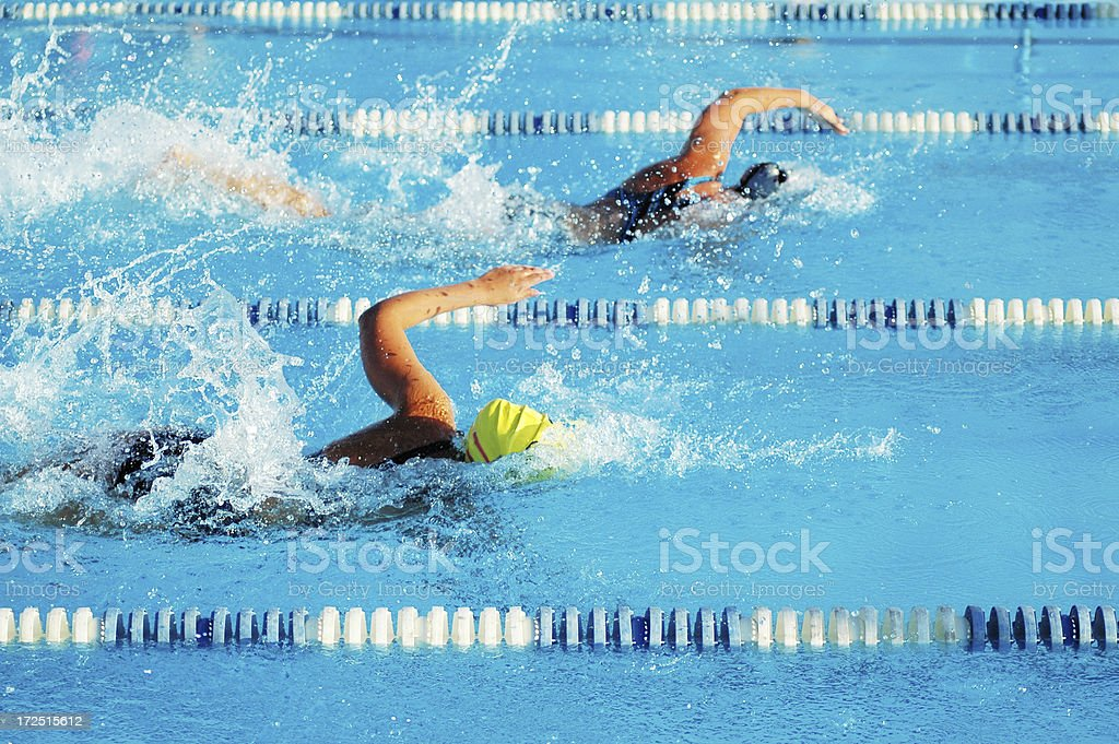 Female Sports Freestyle Swimmers Racing in Swimming Pool Girl Power stock photo