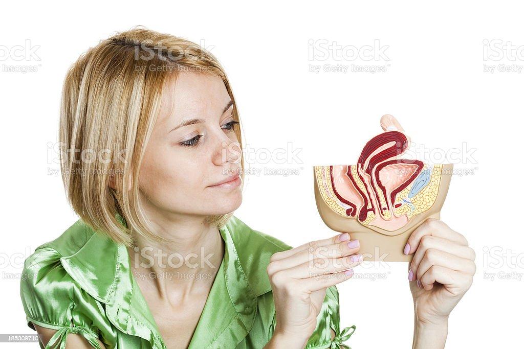 Female student holding pelvis model stock photo