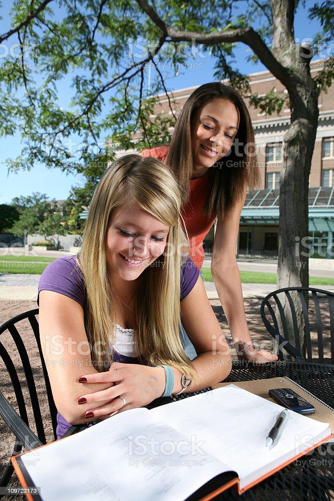 Female Students Studying royalty-free stock photo