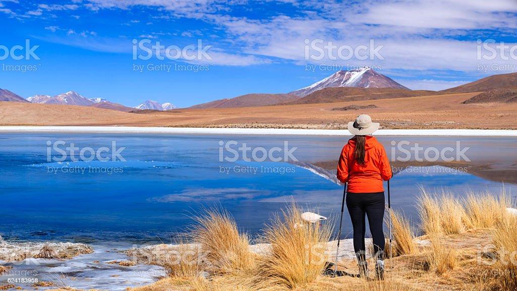 Female tourist looking at Laguna Canapa, Bolivian Altiplano stock photo