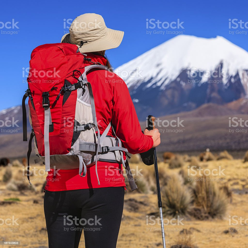 Female tourist looking at Parinacota volcano on the bolivian altiplano stock photo