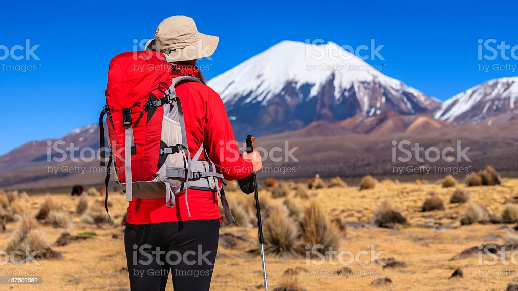 Female tourist looking at Parinacota volcano on the bolivian altiplano stock photo