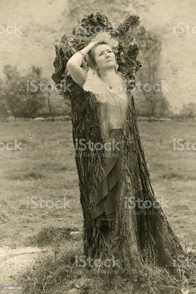 Female tree spirit stock photo