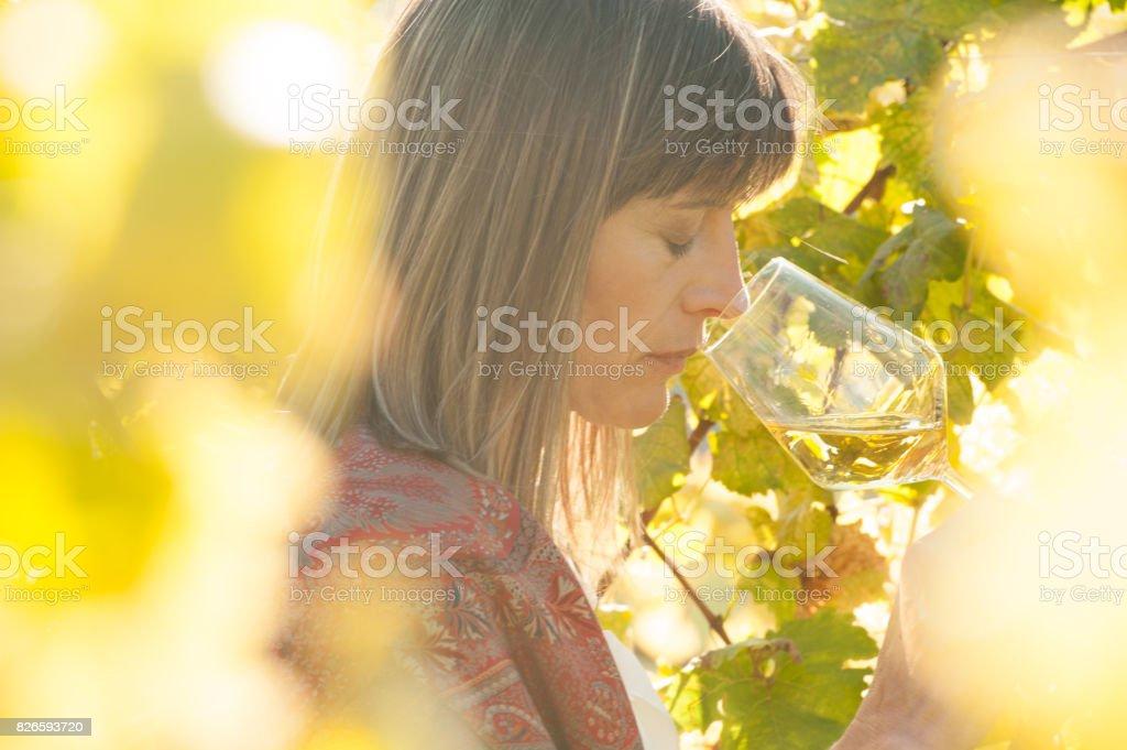 Female Winemaker with Glass of White Wine in Vineyard stock photo