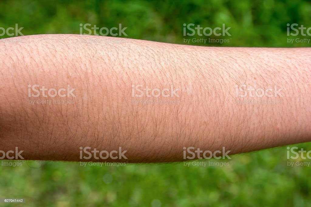 Female with hairy arm stock photo