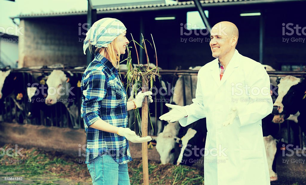 Female worker and mature veterinary in farm stock photo