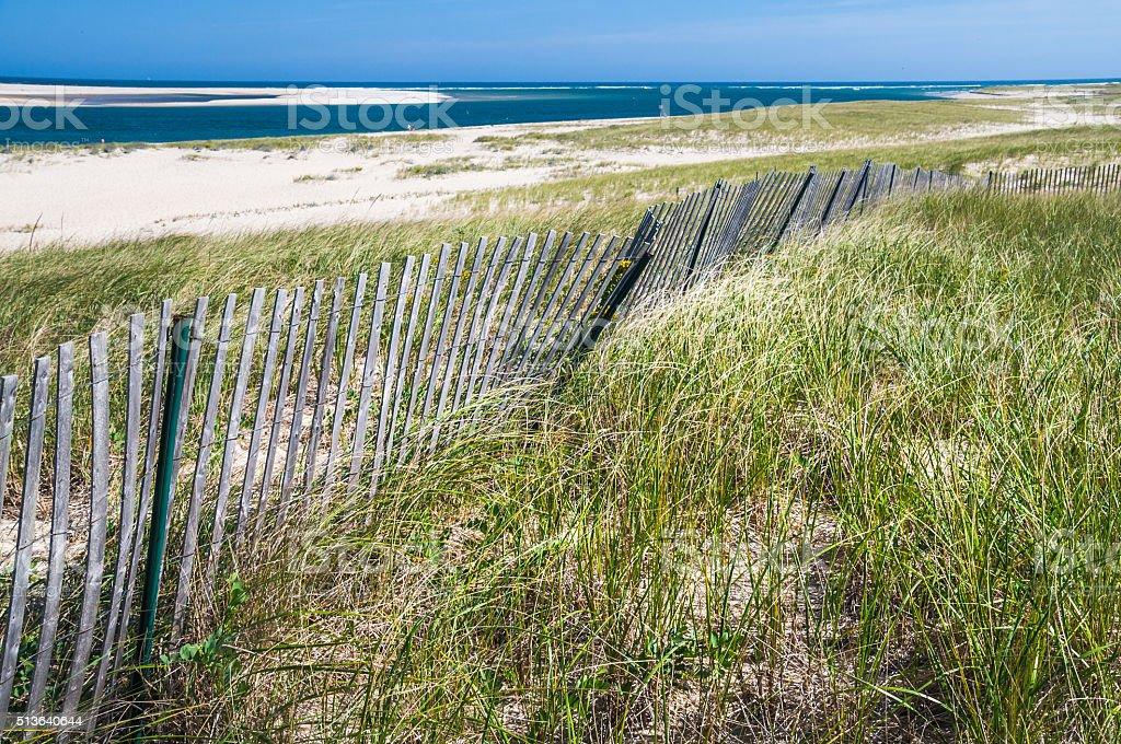 Fence along a Chatham Beach stock photo