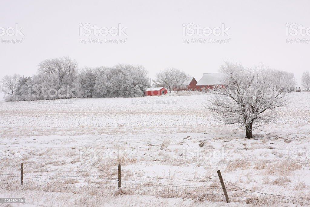 Fence and a Frosty Iowa Farmstead stock photo