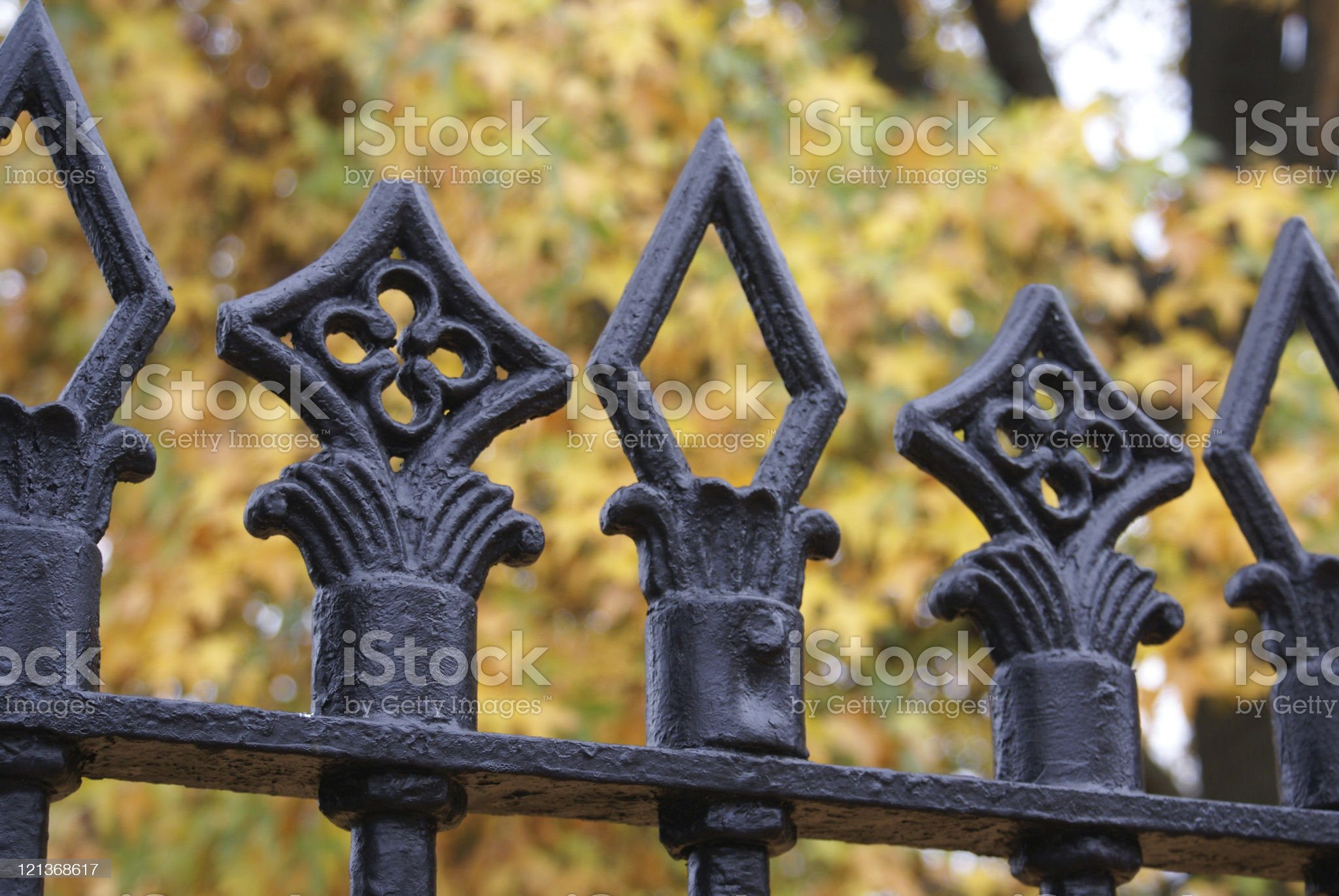 Fence and Autumn Leave royalty-free stock photo