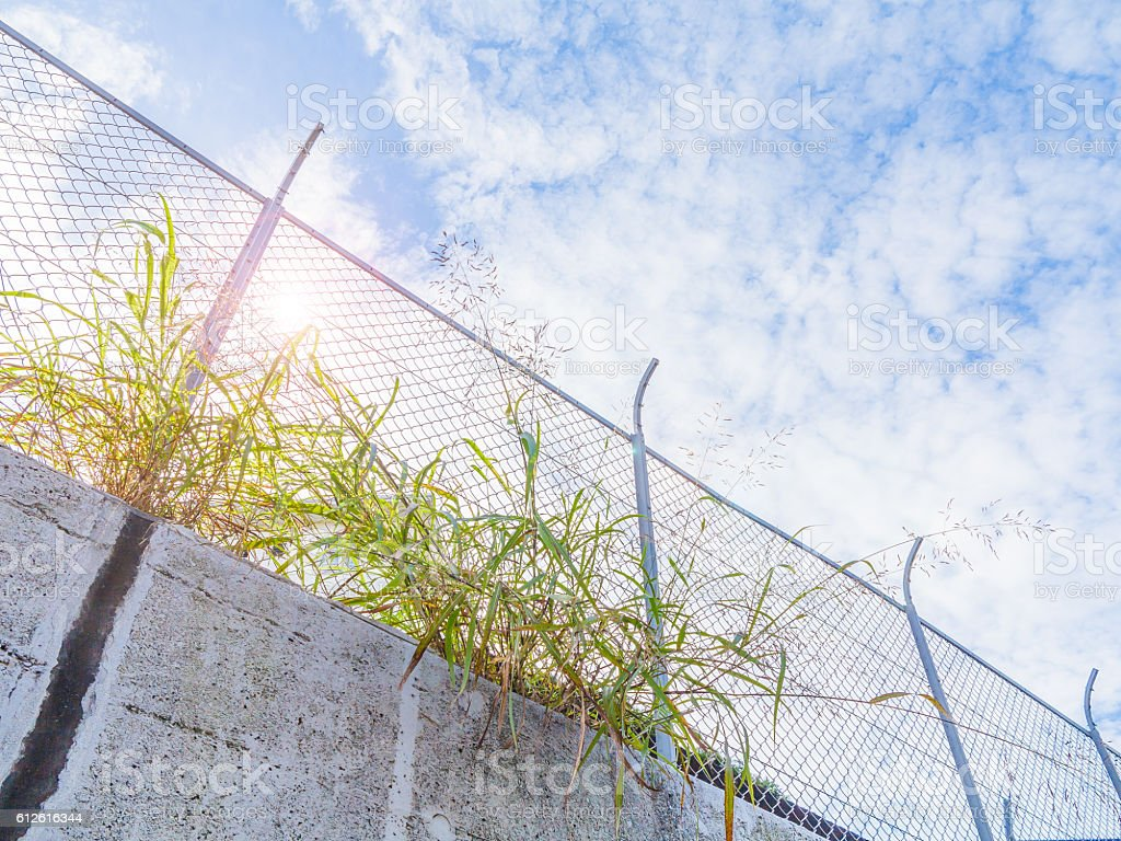 Fence and blue sky stock photo