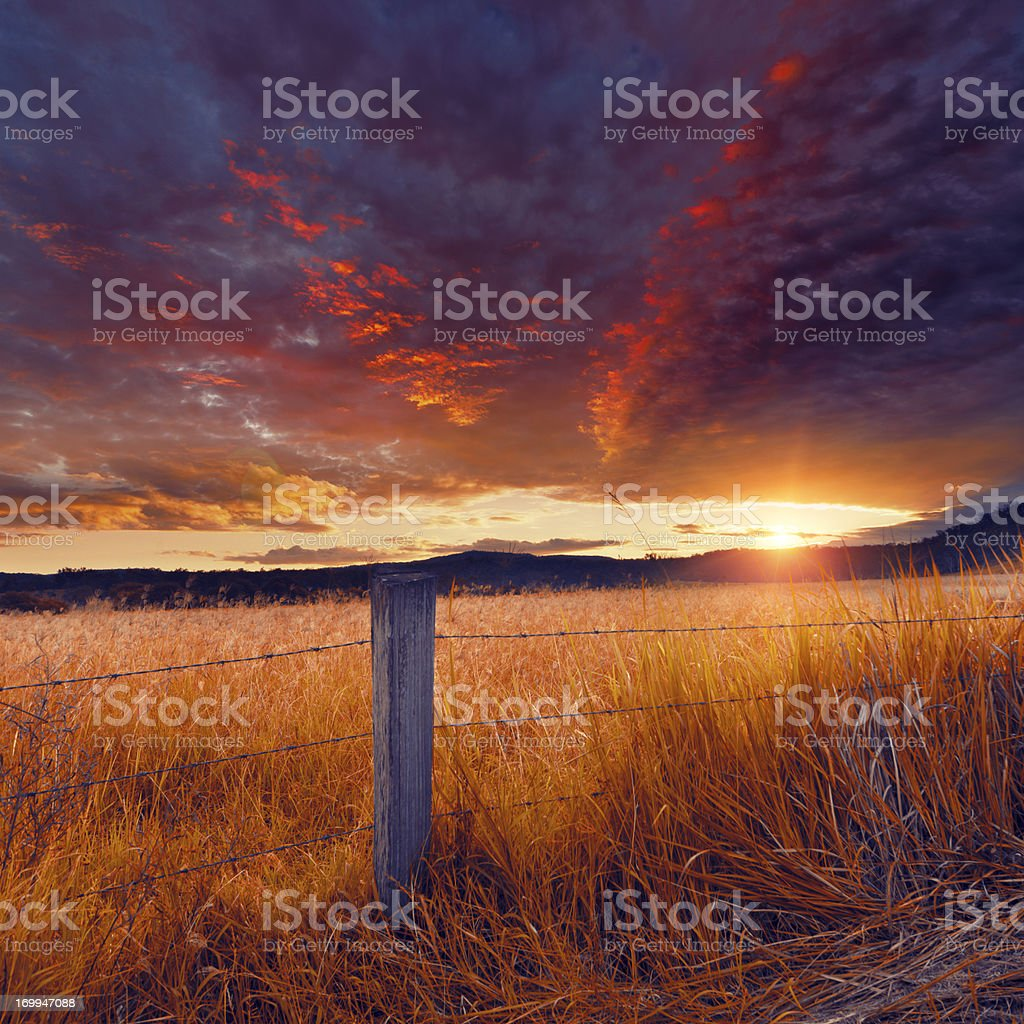Fence and Field stock photo