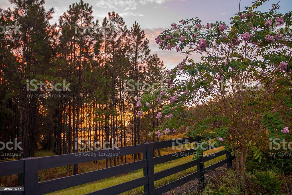 Barrière et de la nature photo libre de droits