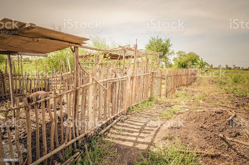 Fence Animals stock photo