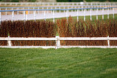Fence as obstacle for racehorses on race course