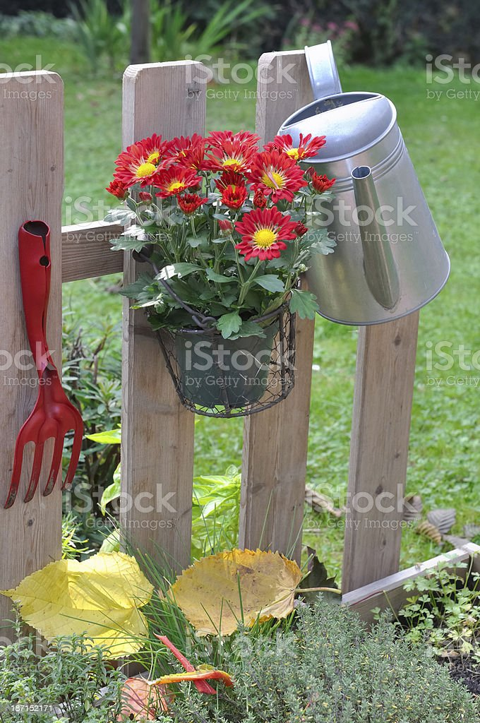 fence for garden royalty-free stock photo
