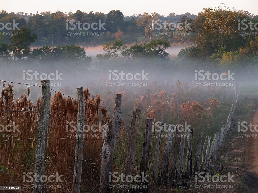 fence in a pasture with fog, paraguay, south america stock photo