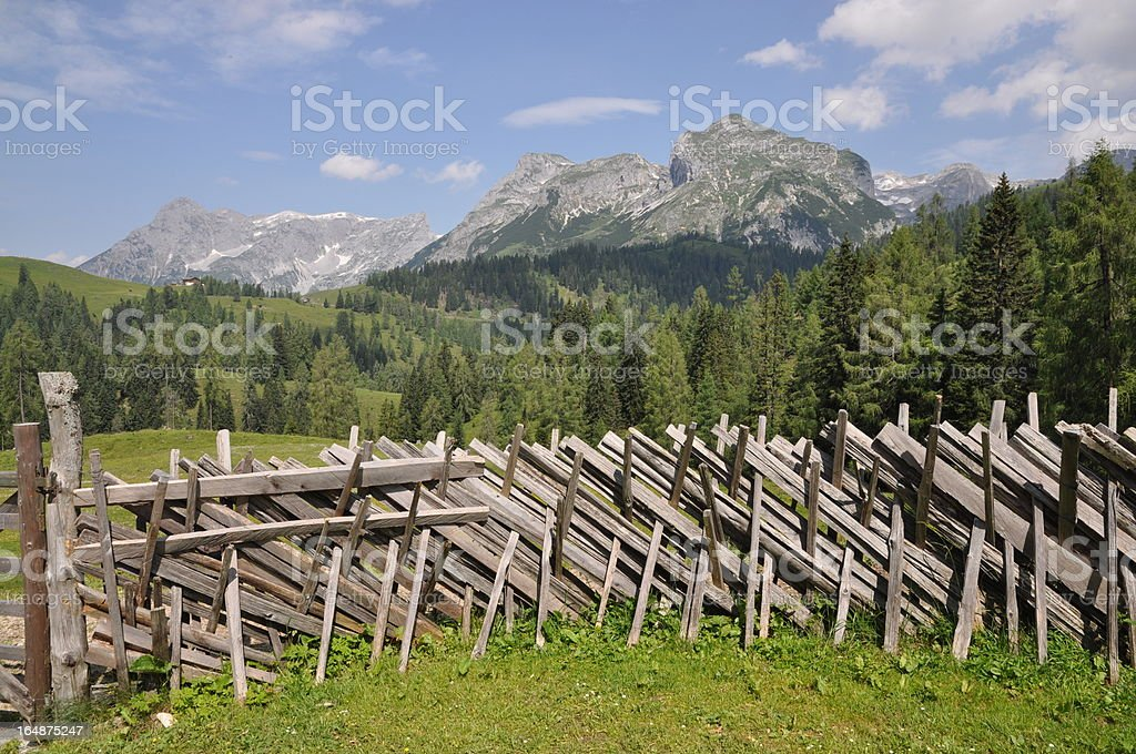 Fence in Austria (Tennengebirge) stock photo