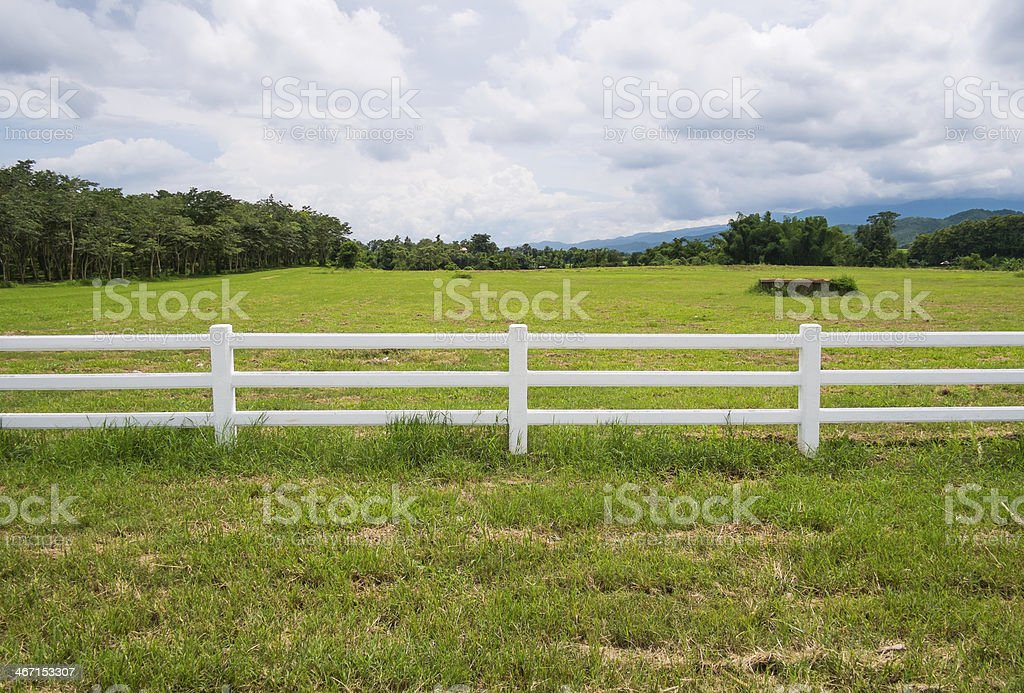 fence in farm field with cloudy stock photo