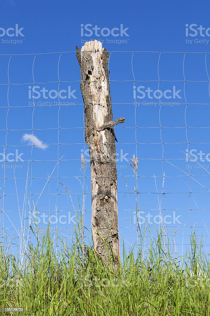 Fence in Front of Blue Sky royalty-free stock photo