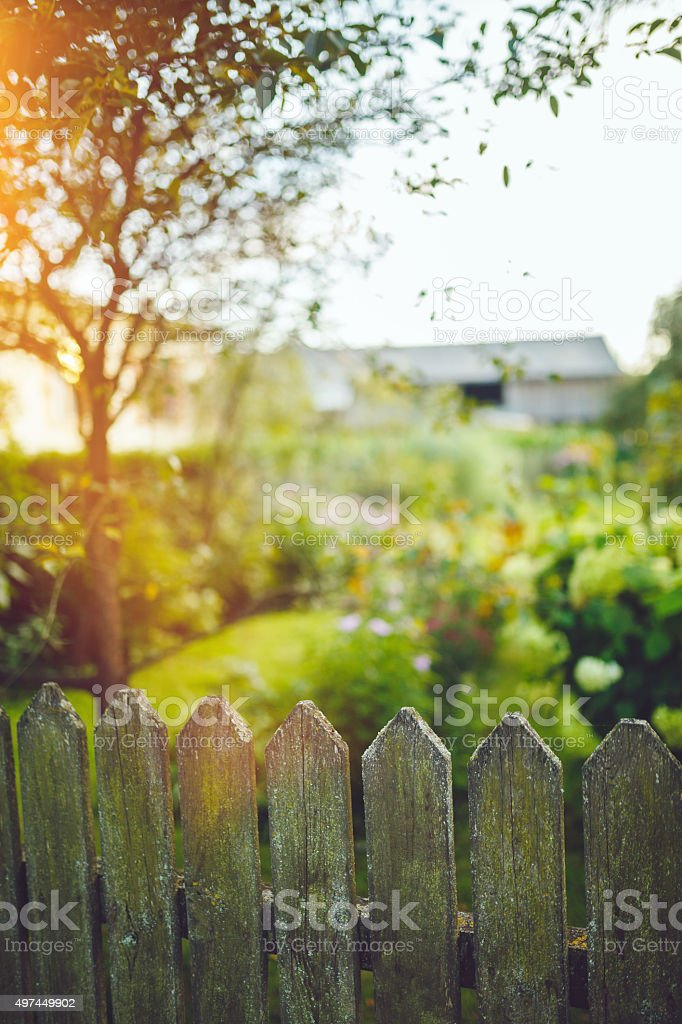 Fence in front of the garden stock photo