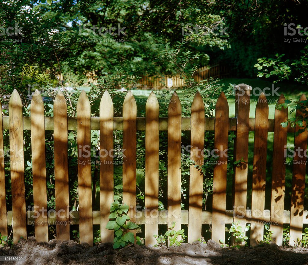 Fence in the garden royalty-free stock photo