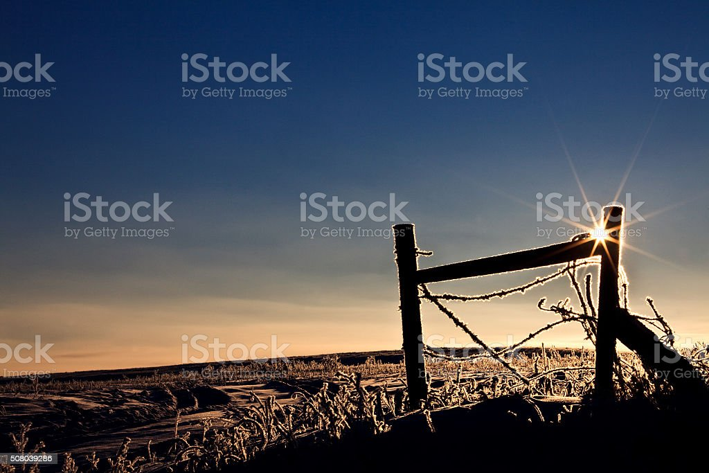 Fence in Winter with Frost stock photo