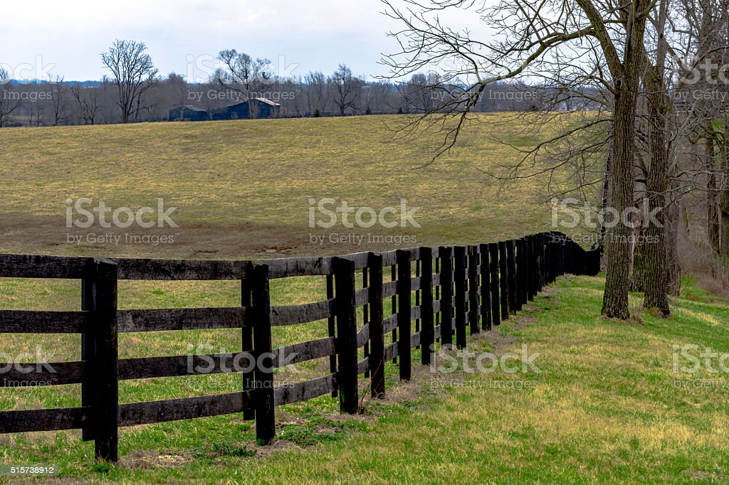 Fence line of a horse pasture stock photo