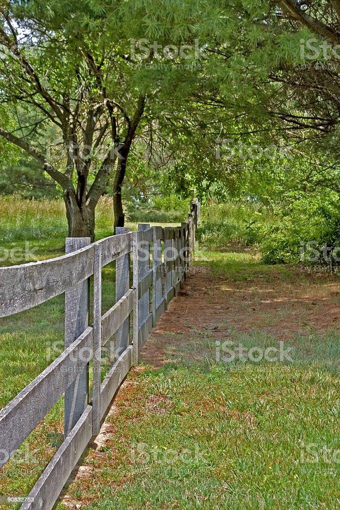 Fence Line stock photo