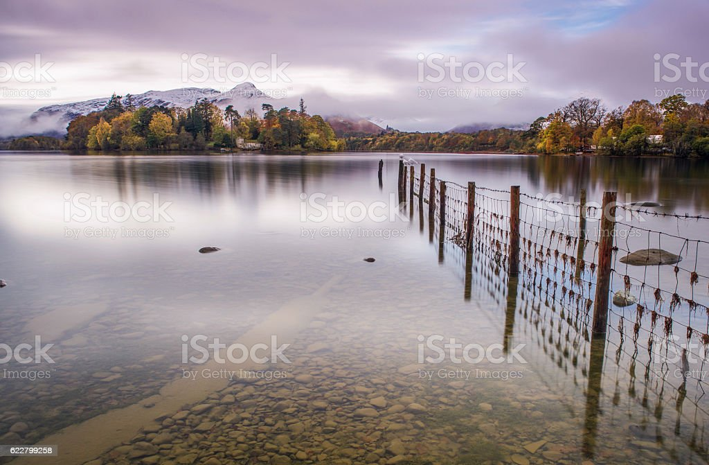 Fence lines stock photo