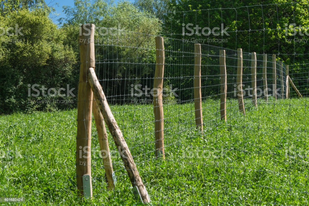 Fence of a pasture stock photo