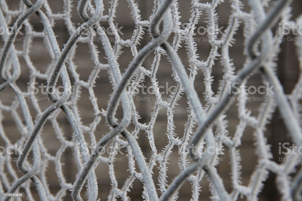 Fence of frost stock photo