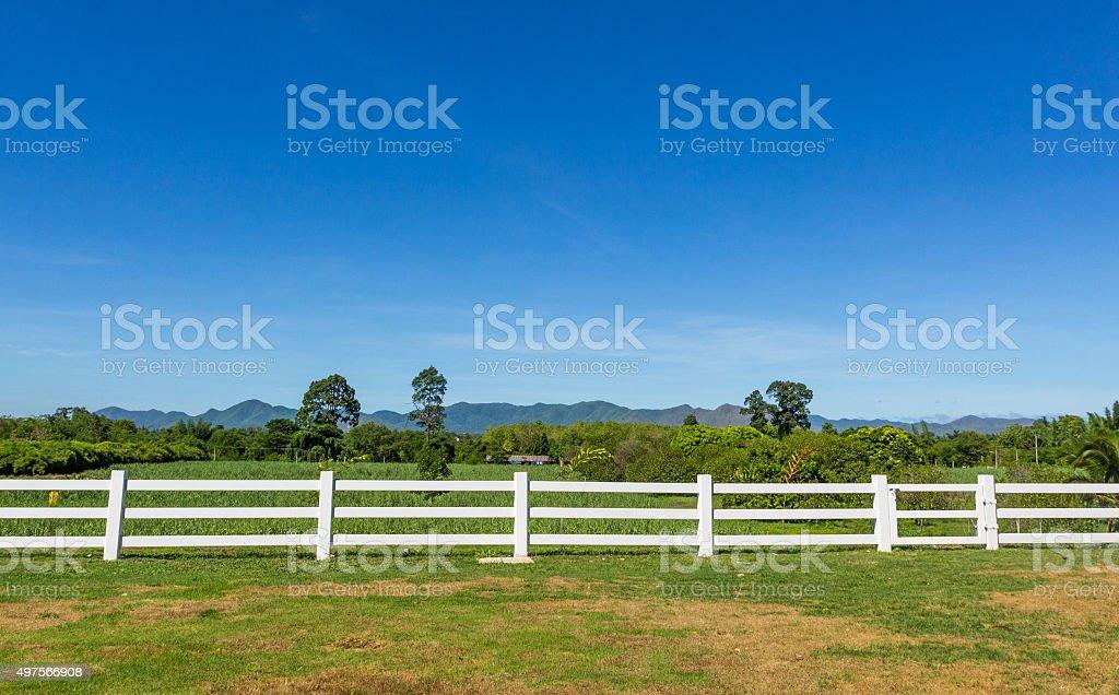 Fence on a Farm stock photo