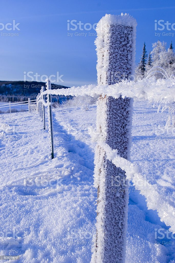FROZEN: fence royalty-free stock photo