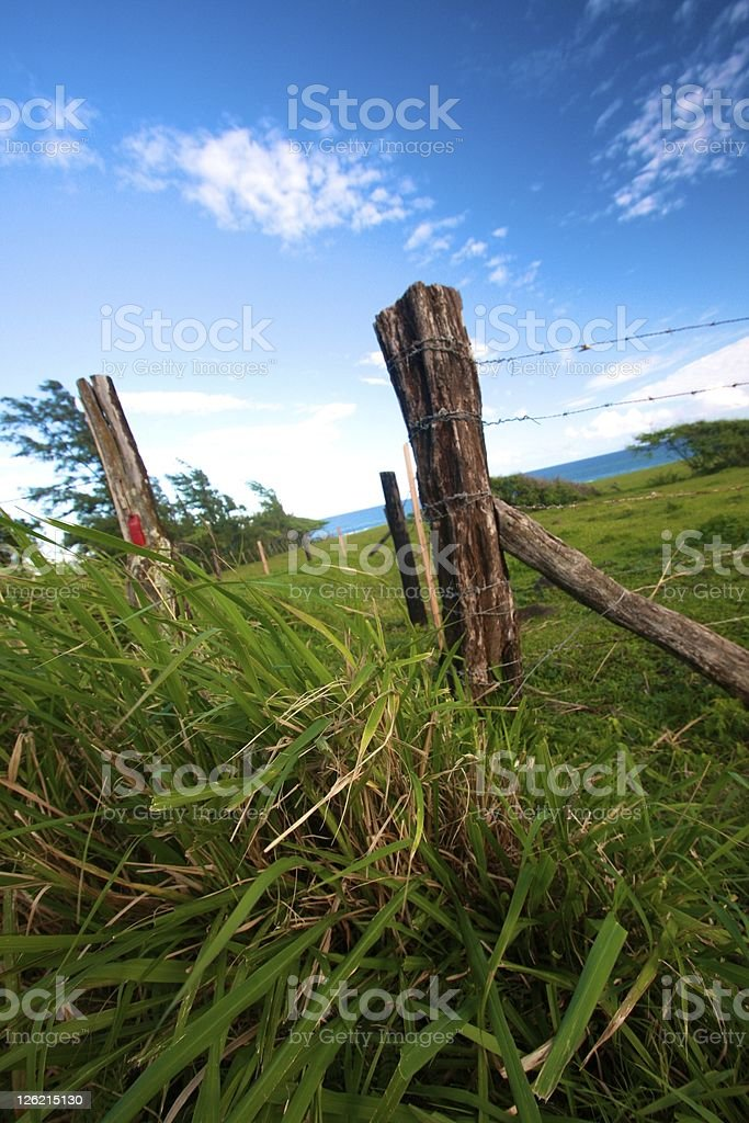 fence post in field stock photo