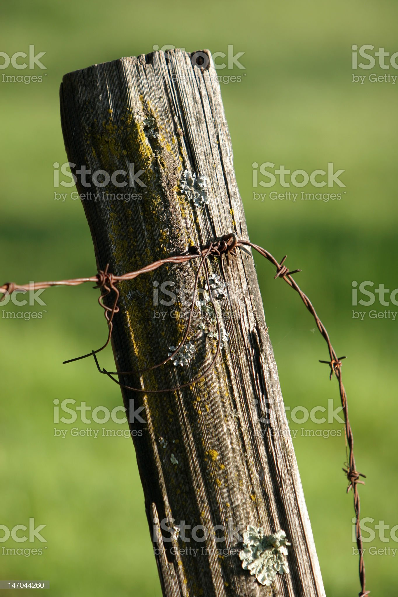 Fence post royalty-free stock photo
