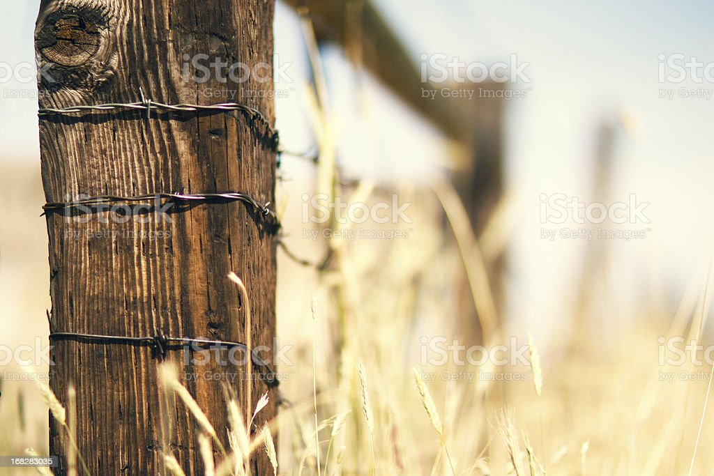 Fence Post stock photo