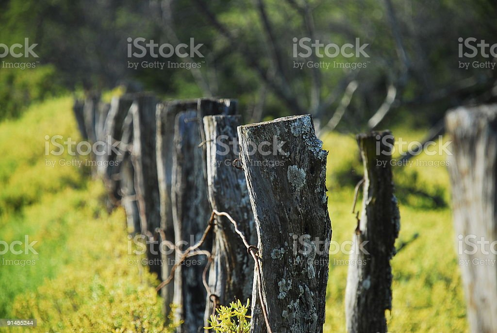 Fence Posts 1 royalty-free stock photo