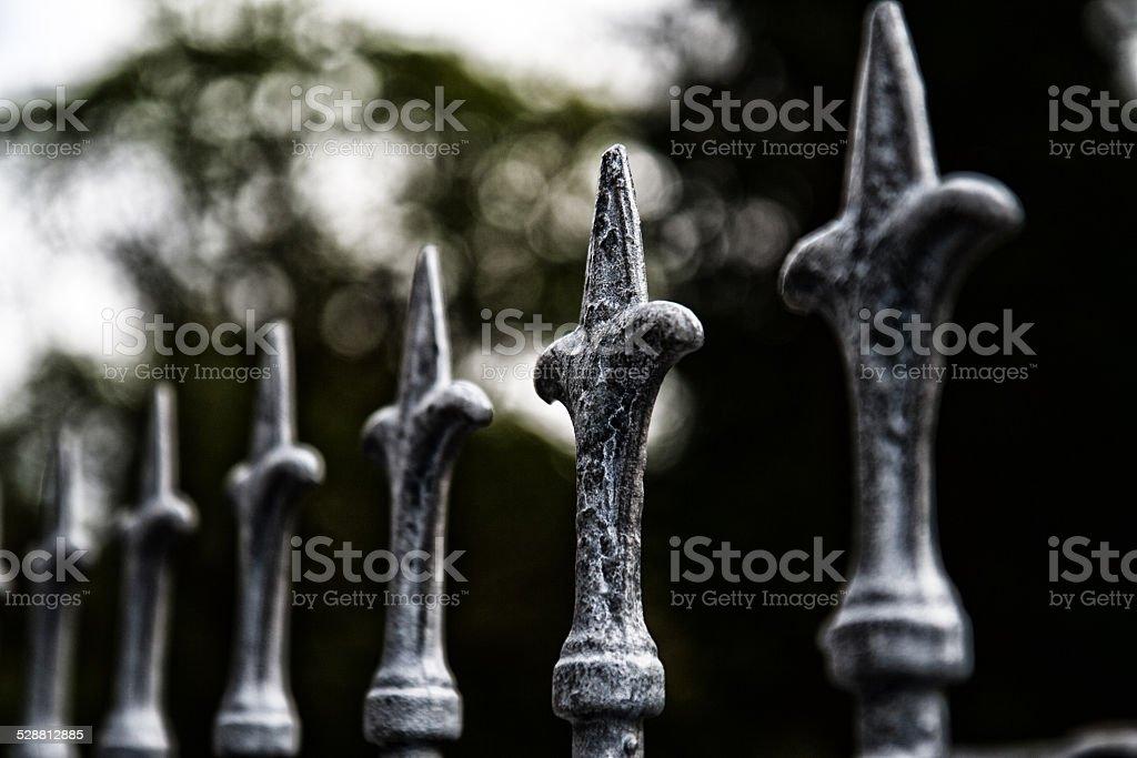 Fence posts stock photo