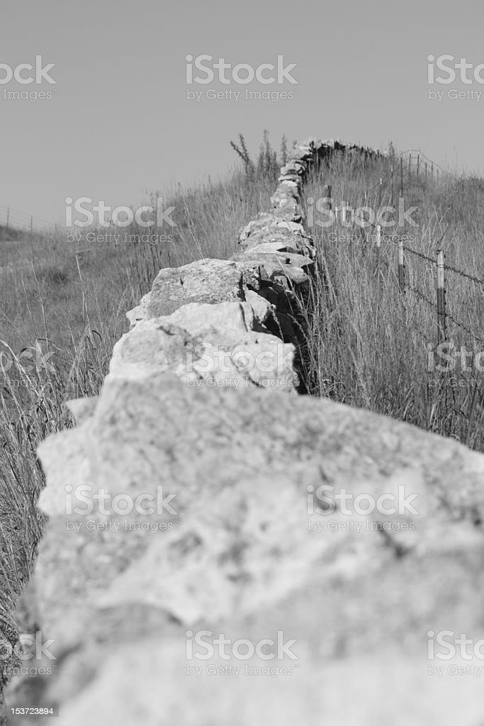 fence row stock photo