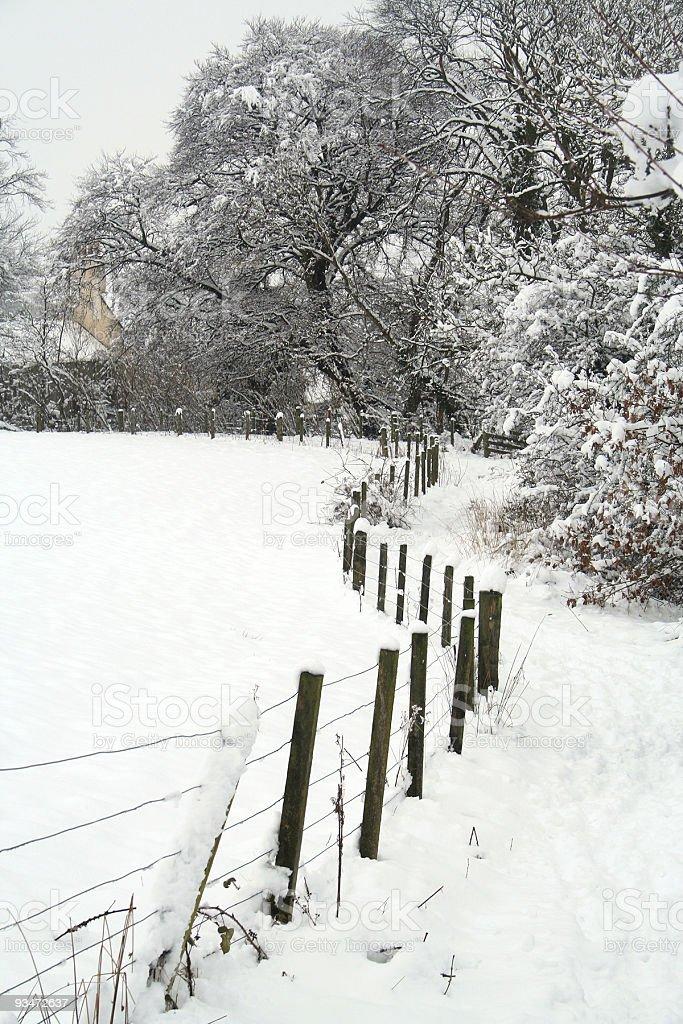 Fence snow royalty-free stock photo