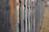 Fenced Focus