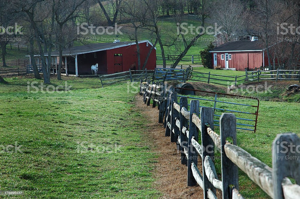Fenced In royalty-free stock photo