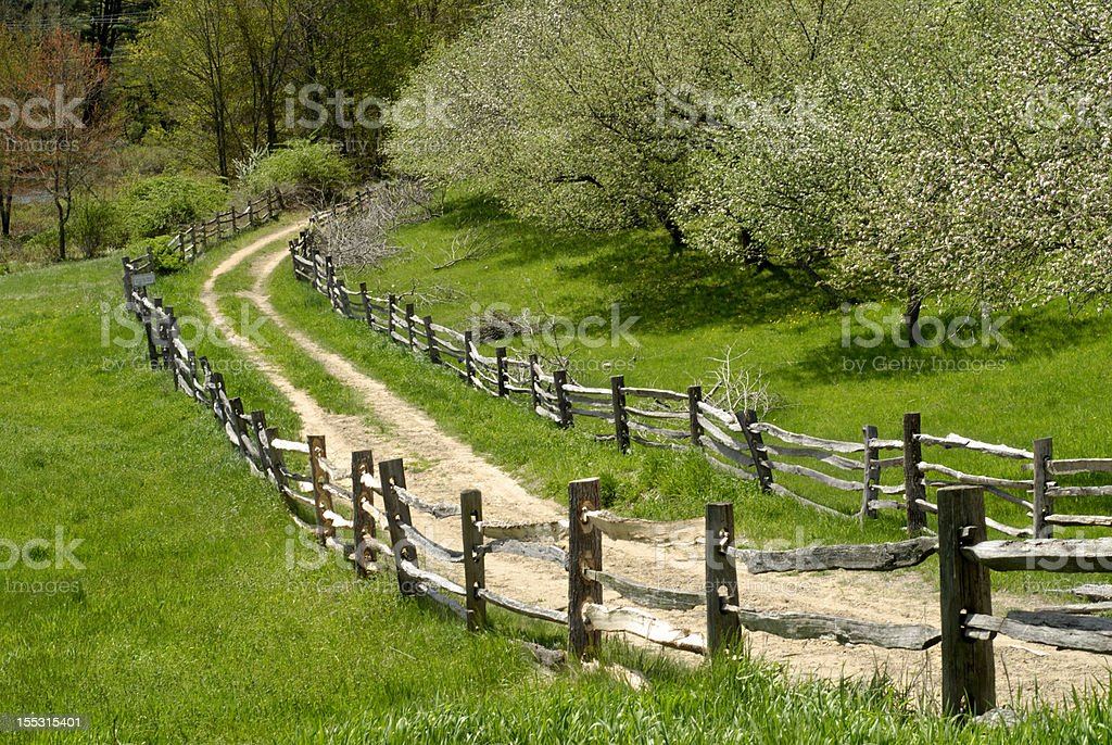 Fenced Pathway royalty-free stock photo