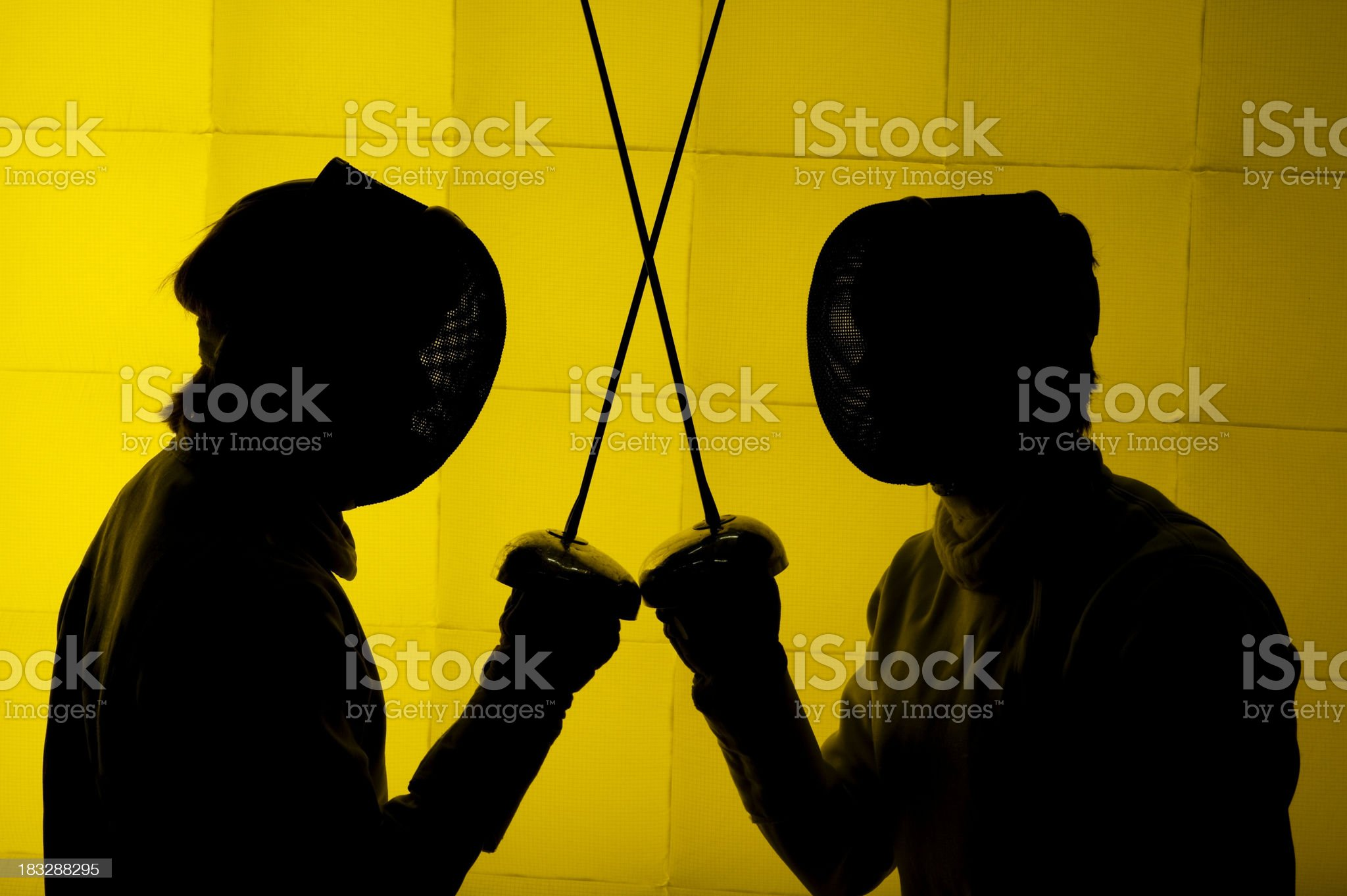 Fencing Silhouette royalty-free stock photo