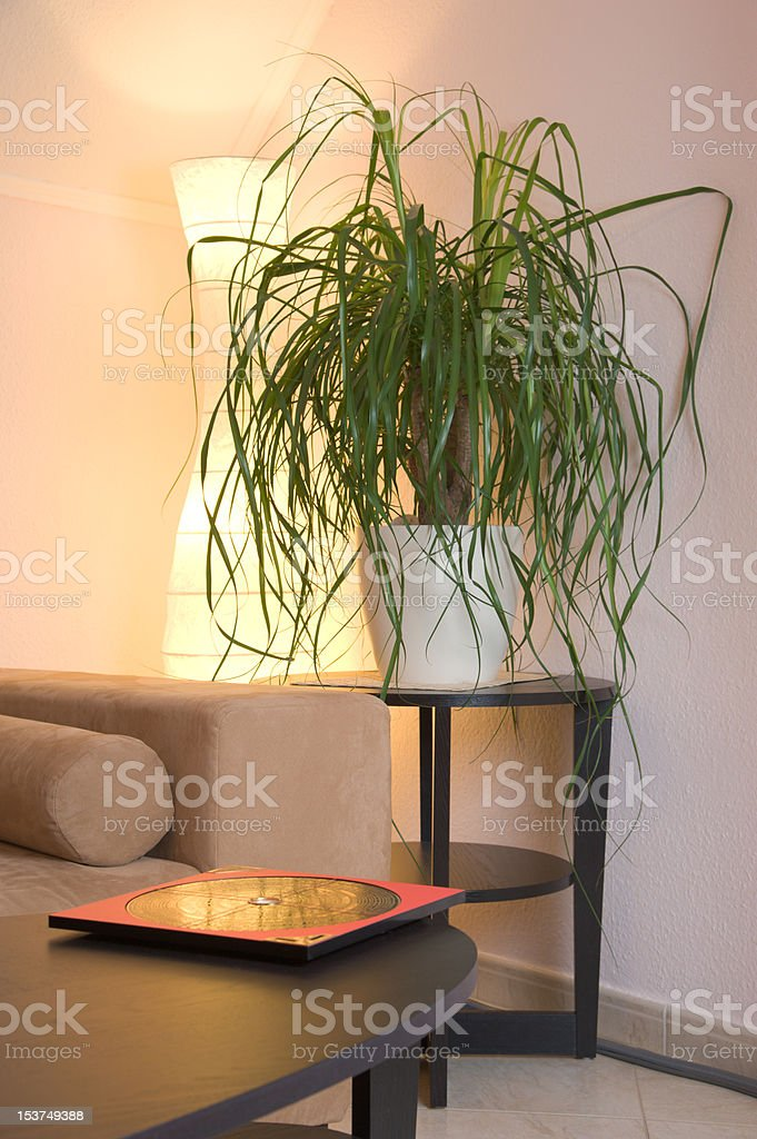 Feng Shui stock photo