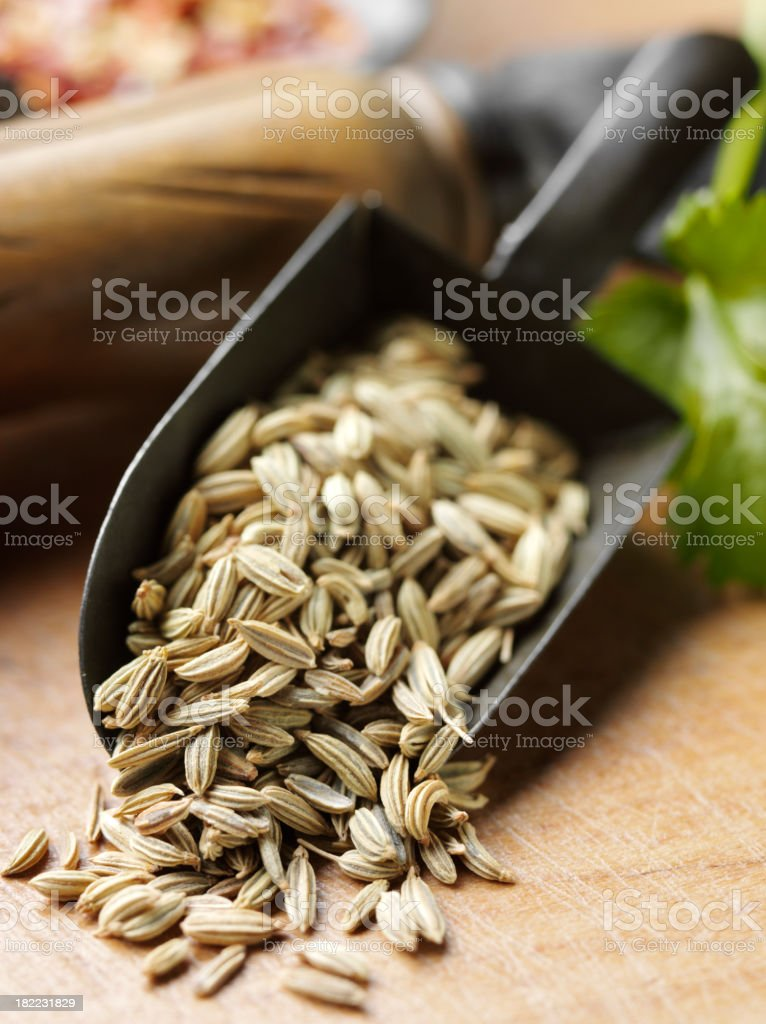 Fennel Seed Spice royalty-free stock photo