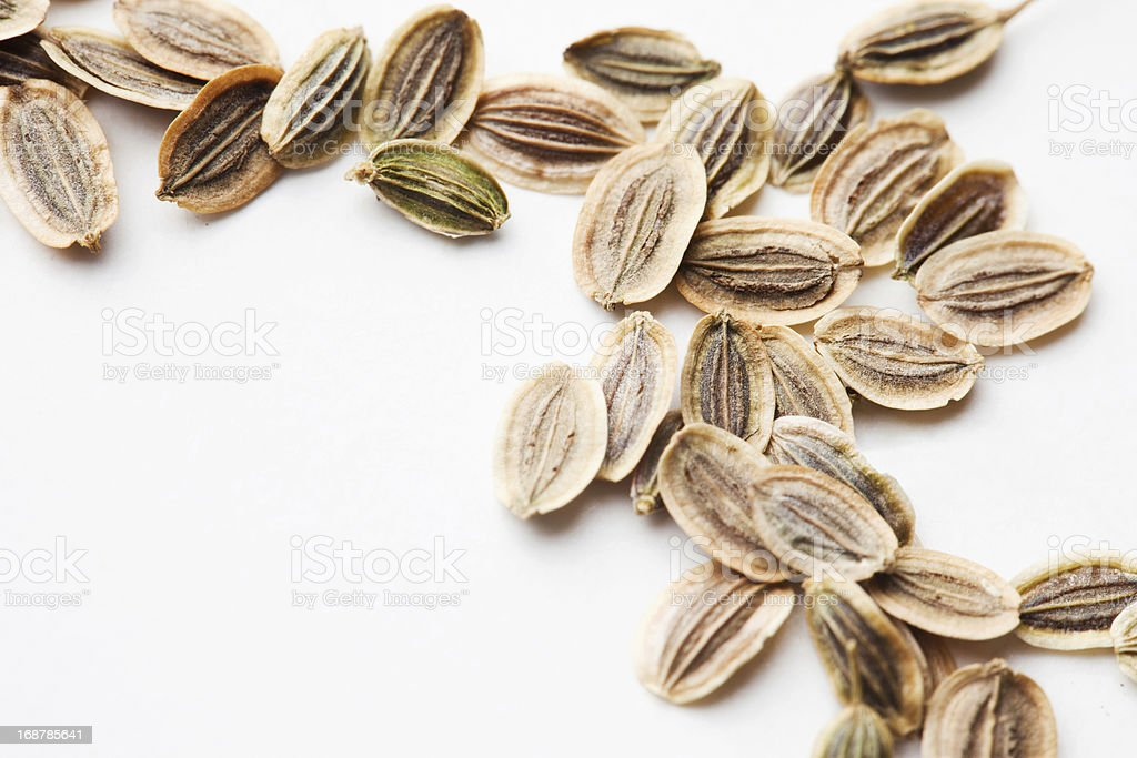 Fennel Seeds Background royalty-free stock photo